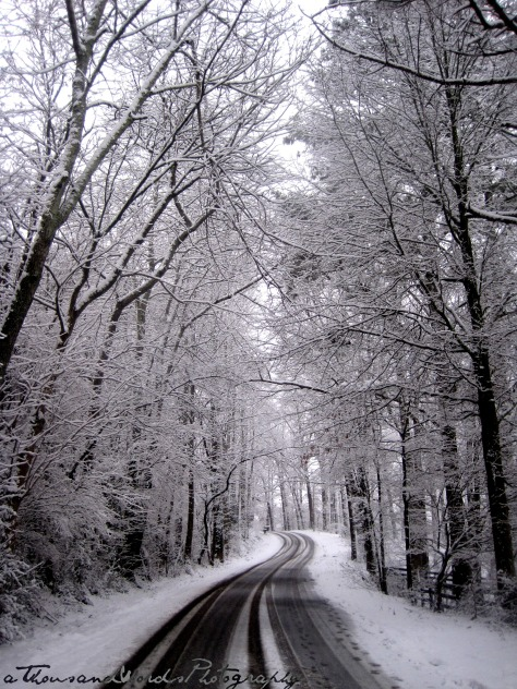 Favorite Winter