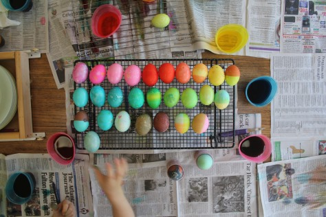 Dying Eggs!